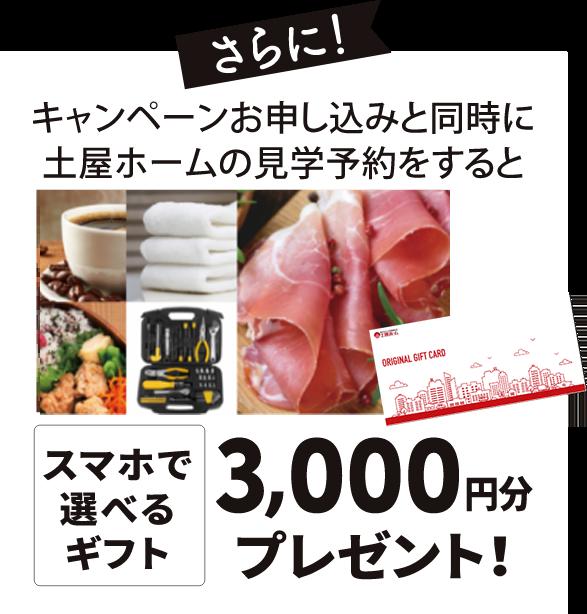 スマホで選べるギフト3,000円分プレゼント!